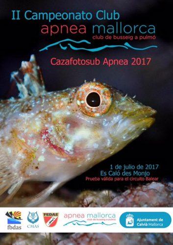 CAZAFOTO: II Open Club Apnea Mallorca